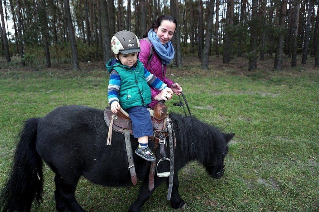 krajkowo konie jazda konna dzieci kucyki kucyk