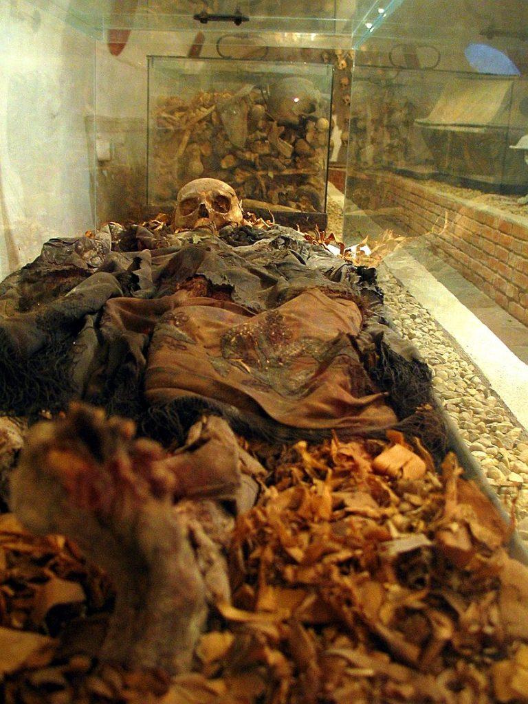 zmumifikowane zwoki zakonników w krypcie pod kościołem