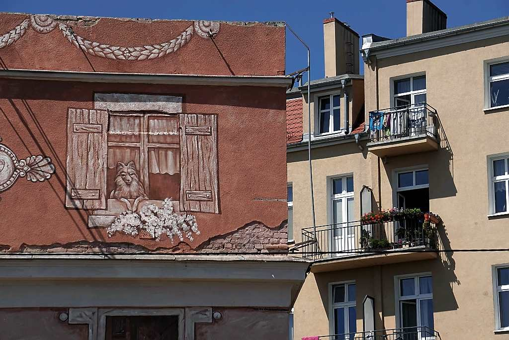 mural w poznaniu dolna wilda