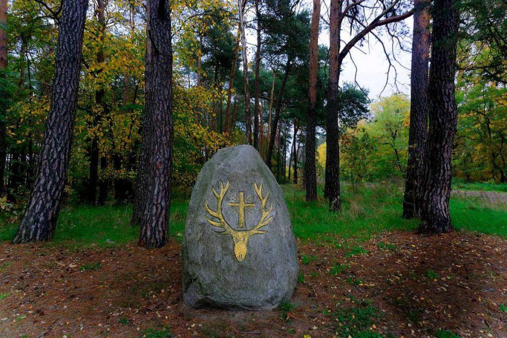 tajemniczy kamień w lesie